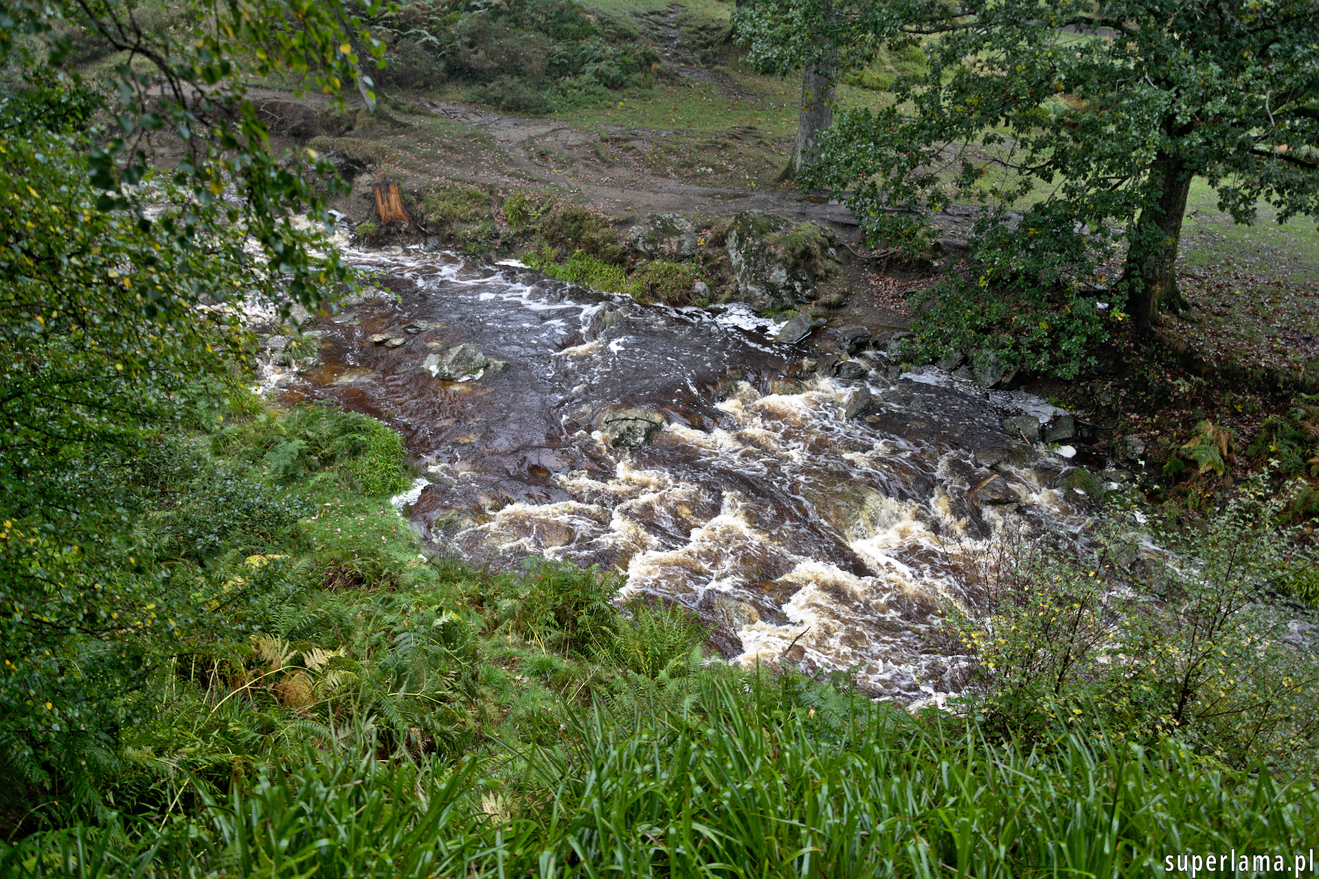 Powerscourt, Dargle river